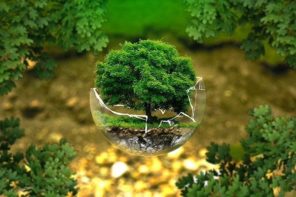 eco-responsable-traiteur